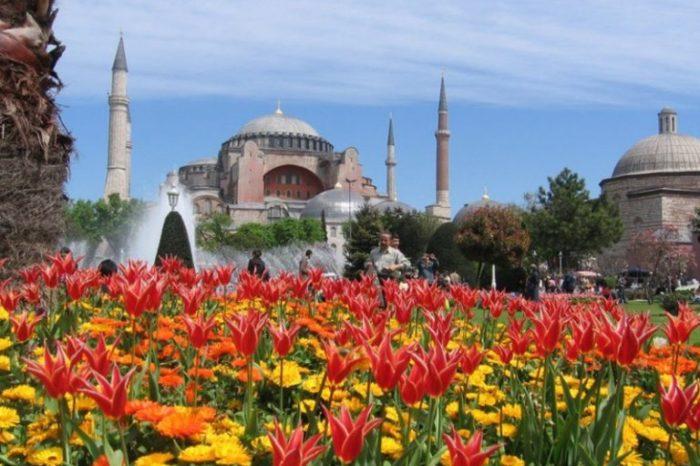 Фестиваль цветов в Стамбуле, Турция.
